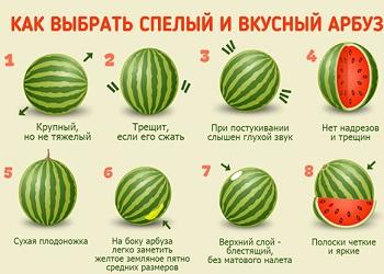 Нюансы выбора спелого арбуза