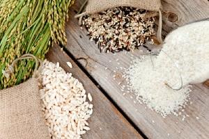 Обработка риса перед посевом