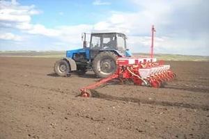 посев кукурузы трактором